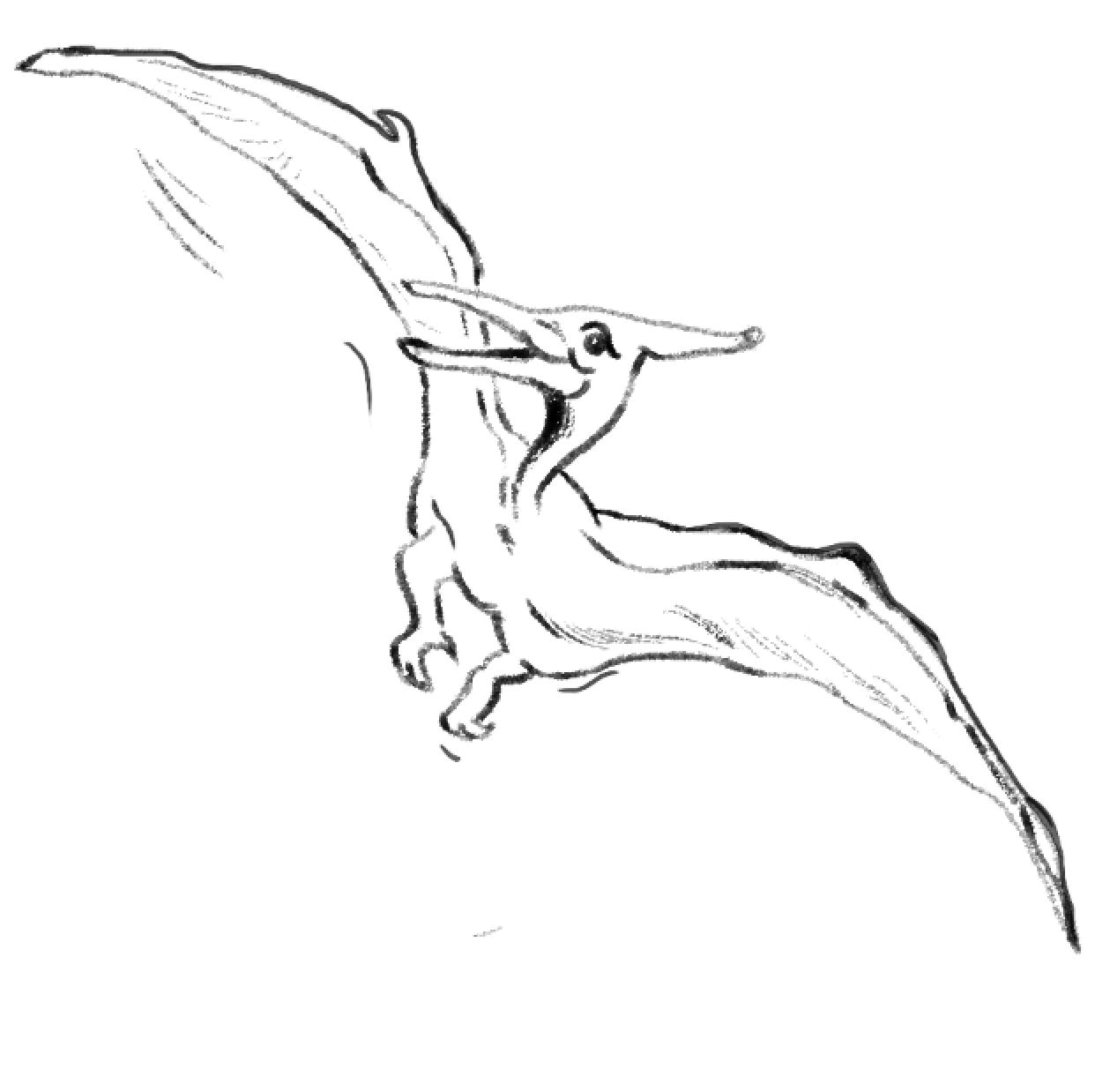 pterodactyl_sketch_vesidashinova